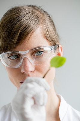 Junge Frau schaut mit Pinzette Blatt an - hoch - p1212m1128354 von harry + lidy