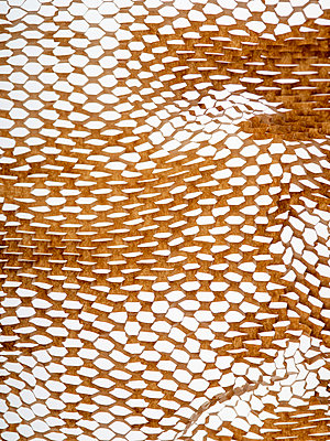 Packing paper with perforated structure - p401m2168390 by Frank Baquet