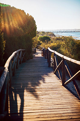 Spain, Andalusia, Huelva, boardwalk through nature park at backlight - p300m998925f by klublu