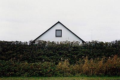 p627m672029 von Anna Anklam