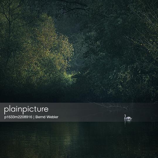 A Long Forgotten Tune - p1633m2208916 by Bernd Webler