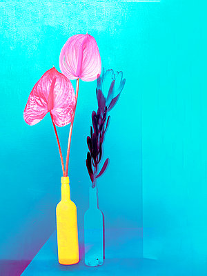 Flowers and flower vase - p1413m2065491 by Pupa Neumann
