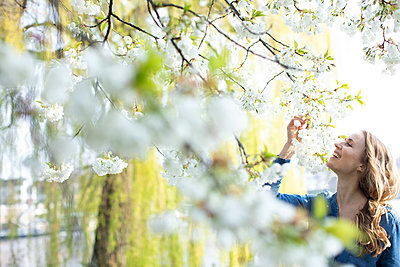 Woman looking at a cherry tree - p1678m2258844 by vey Fotoproduction