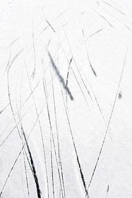 Fahrspuren - p4350088 von Stefanie Grewel