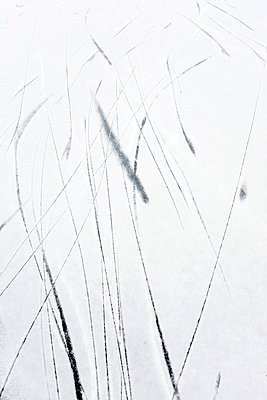 Frozen surface - p4350088 by Stefanie Grewel