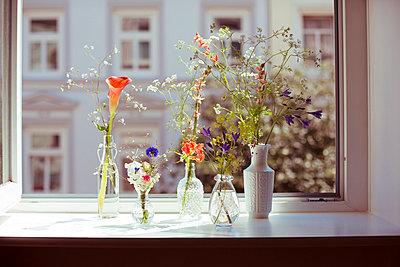 Blumen am Fenster - p432m823880 von mia takahara