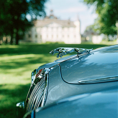 A jaguar car close-up Sweden - p31220053 by Mikael Dubois