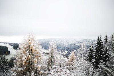 Vosges 08 - p987m2223940 by Célia Swaenepoel