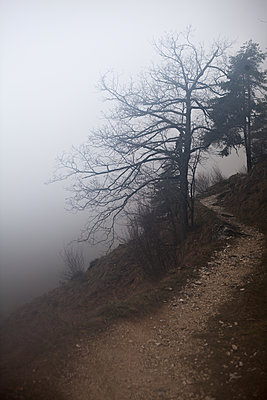 Hiking trail in the fog - p721m1123869 by Timo Kleinerüschkamp
