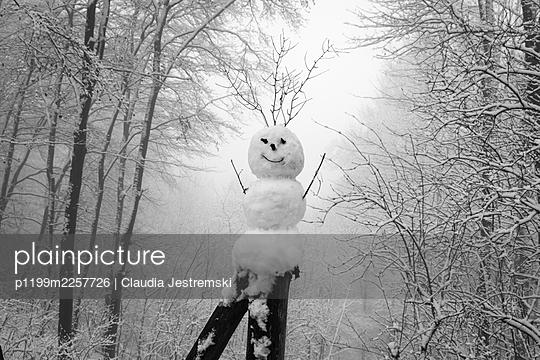 Snowman - p1199m2257726 by Claudia Jestremski