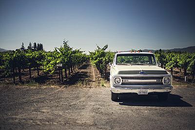 Vineyards Pickup - p1290m1111065 by Fabien Courtitarat