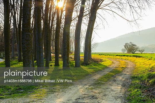 p1403m1588798 von Mikel Bilbao /VW Pics