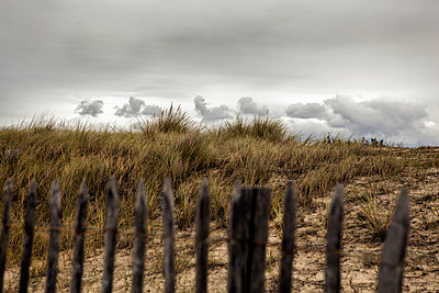 Atlantic coast - p1101m912419 by Man Betov
