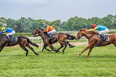 Pferderennen - p401m1465474 von Frank Baquet