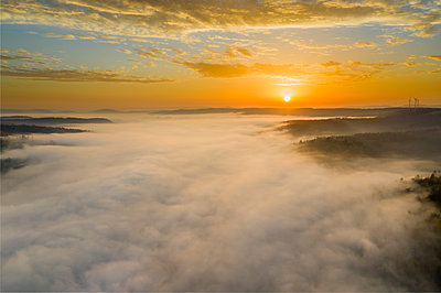Drone view of autumn forest shrouded in thick fog at sunrise - p300m2241689 by Stefan Schurr