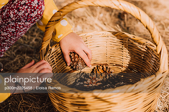 Girl collecting pine cones in wicker basket at park on sunny day - p300m2225458 by Eloisa Ramos