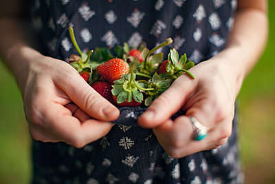 Midsection of female farmer holding strawberries in dress at farm - p1166m1154025 by Cavan Images