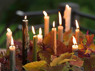 Lit Taper Candles on an Outdoor Table with Leaves - p1183m997225 by Bronze Photography