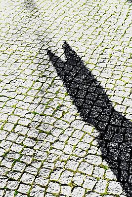 Schatten eines Hundes - p1210m2222282 von Ono Ludwig