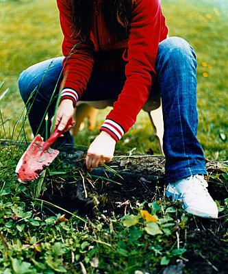 Einpflanzen - p3128768 von Magnus Fond