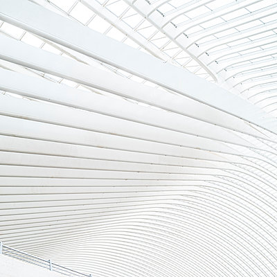 Liège-Guillemins station in Liège - p401m2207496 by Frank Baquet