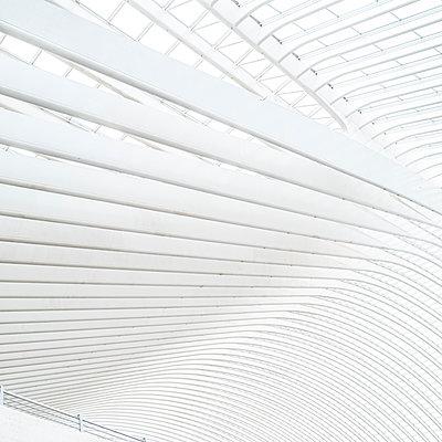 Dachkonstruktion Bahnhof Liège-Guillemins in Lüttich - p401m2207496 von Frank Baquet