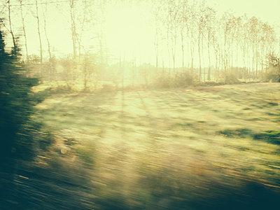 Sunny field - p968m912924 by Roberto Pastrovicchio