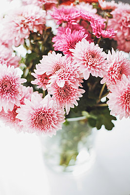 Asters in a vase - p1006m1425219 by Danel