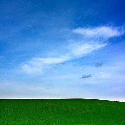 Agricultural landscape - p813m883236 by B.Jaubert