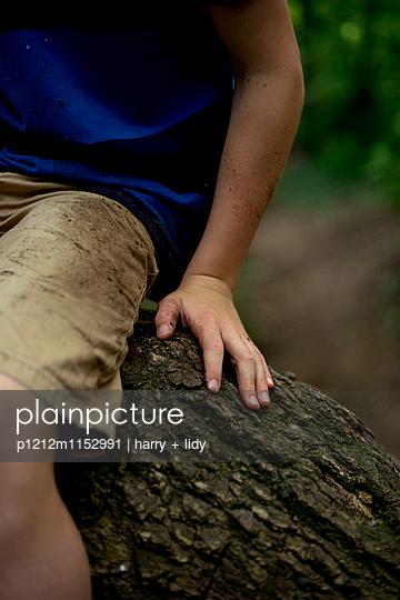 Junge hebt Ast im Wald - p1212m1152991 von harry + lidy