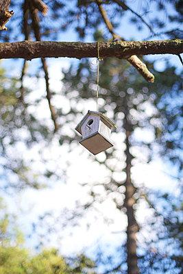 Vogelhaus im Wald - p606m1564844 von Iris Friedrich