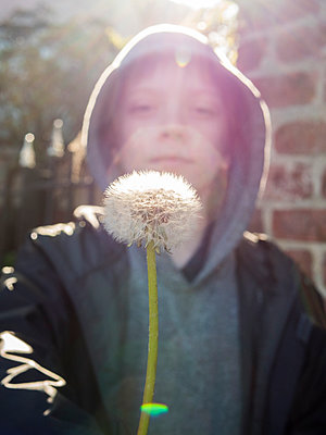 Portrait of boy holding dandelion seed while standing outdoors - p1166m1554587 by Cavan Social