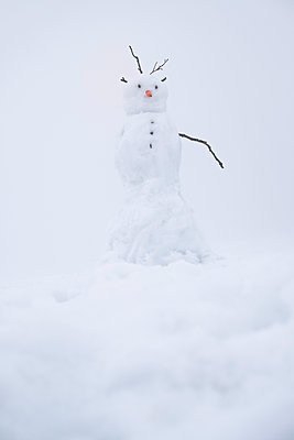 Snowman - p335m1123060 by Andreas Körner