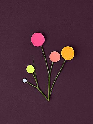 Blumen abstrakt - p1461m1573175 von NASSIM OHADI