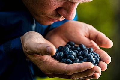 Man cupping and smelling fresh, ripe blueberries - p301m2075685 by berkpixels