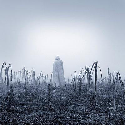 Spooky - p992m720995 by Carmen Spitznagel