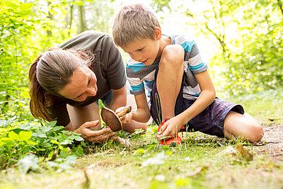 Boy and tcher examining mushroom in nature - p300m2160744 von Fotoagentur WESTEND61