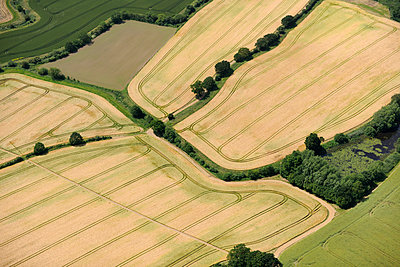 Wheat Fields aerial view - p1048m1069193 by Mark Wagner