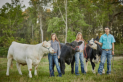 Brother and sisters posing with cows in field - p555m1482021 by Terry Vine