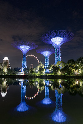 """""""Supertrees"""" in Singapore - p795m1461527 by Janklein"""