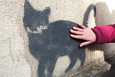 Street cat - p927m1445756 by Florence Delahaye