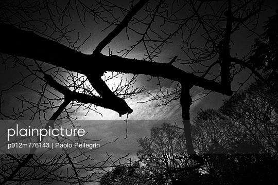 p912m776143 von Paolo Pellegrin