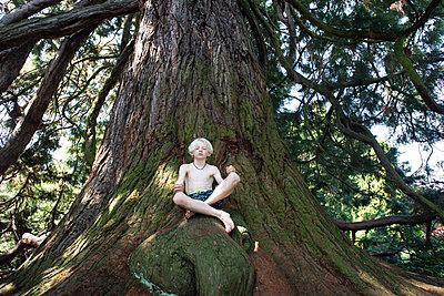 Junge sitzt auf einem Baum - p1354m2285989 von Kaiser