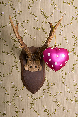Pink heart and deer's antlers - p4510906 by Anja Weber-Decker