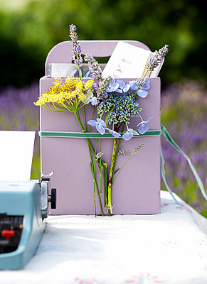 Cut flowers and typewriter on table in Isle of Wight garden;  UK - p349m920078 by Rachel Whiting