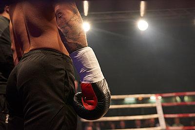 Boxing match - p1076m1093228 by TOBSN