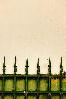 Green fence - p248m912726 by BY