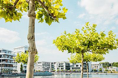 Moderne Ufer Promenade am See - p902m1207620 von Mölleken