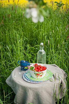 Picnic with fresh strawberries - p1288m1161434 by Nicole Franke