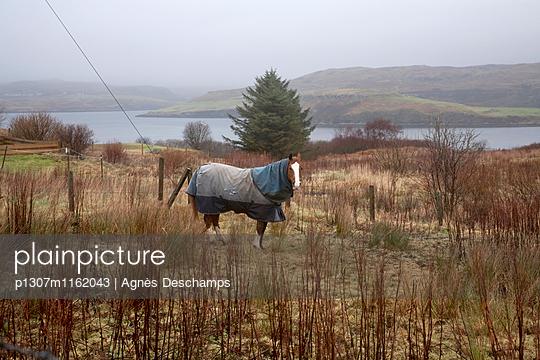 p1307m1162043 von Agnès Deschamps